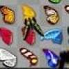 Jeu butterfly kyodai en plein ecran
