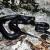 Black Rat Snake Jigsaw