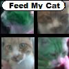 Jeu Feed my Cat en plein ecran