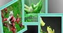 Jeu Green funny frogs puzzle