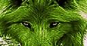 Jeu Native green wolf slide puzzle