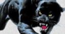 Jeu panther tower defense
