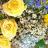 Parellel Floral Jigsaw