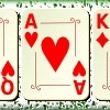 Jeu Poker Open en plein ecran