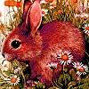 Jeu Tired rabbit on the field puzzle en plein ecran